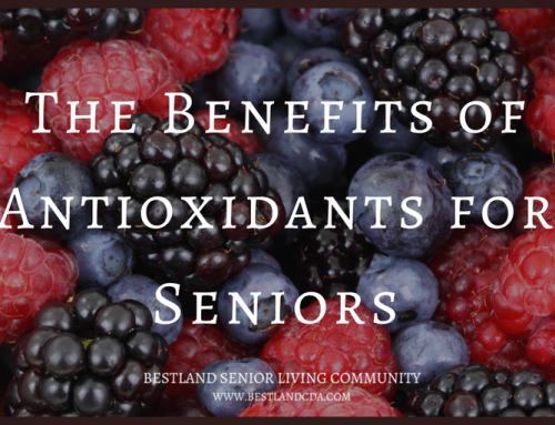 The Benefits of Antioxidants for Seniors