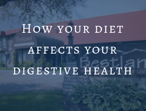 How your diet affects your digestive health